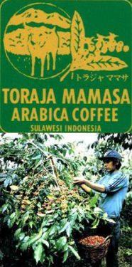 スラウェシ ママサ (Sulawesi Mamasa)