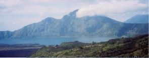インドネシア バリ・アラビカ『神山』
